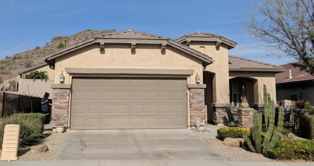 31638 N Poncho Lane, San Tan Valley, AZ 85143 (MLS #5724962) :: The Pete Dijkstra Team