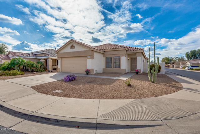 1054 S 53RD Street, Mesa, AZ 85206 (MLS #5724977) :: Group 46:10