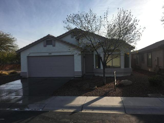 905 S Cerise, Mesa, AZ 85208 (MLS #5725033) :: Group 46:10