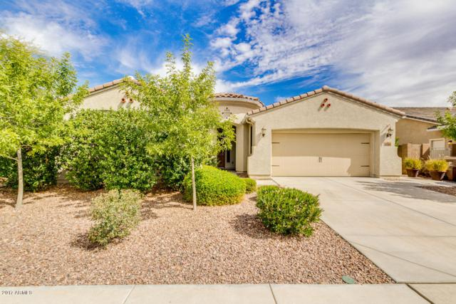 8703 N 89TH Drive, Peoria, AZ 85345 (MLS #5725048) :: Sibbach Team - Realty One Group