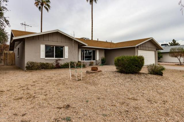 608 E Greenway Drive, Tempe, AZ 85282 (MLS #5725056) :: Group 46:10