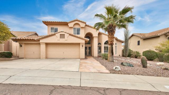 115 E Mountain Sky Avenue, Phoenix, AZ 85048 (MLS #5725069) :: Group 46:10