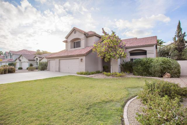 8600 S Maple Avenue, Tempe, AZ 85284 (MLS #5725104) :: Kepple Real Estate Group