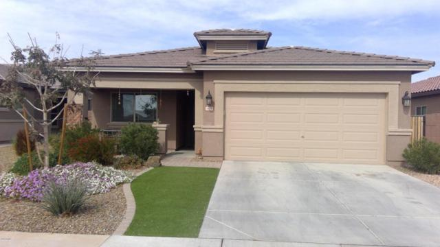 1478 W Popcorn Tree Avenue, San Tan Valley, AZ 85140 (MLS #5725137) :: Santizo Realty Group