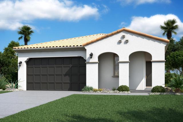 9147 W Minnezona Avenue, Phoenix, AZ 85037 (MLS #5725193) :: Occasio Realty