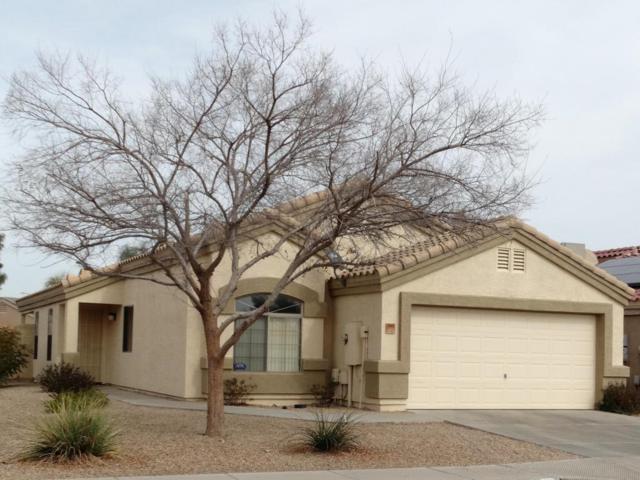 13905 N 126TH Avenue, El Mirage, AZ 85335 (MLS #5725198) :: Kelly Cook Real Estate Group