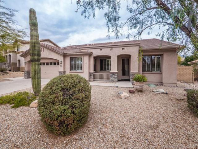 16393 N 105TH Way, Scottsdale, AZ 85255 (MLS #5725216) :: The Everest Team at My Home Group