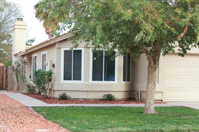 1241 N Woodburne Drive, Chandler, AZ 85224 (MLS #5725248) :: The Kenny Klaus Team