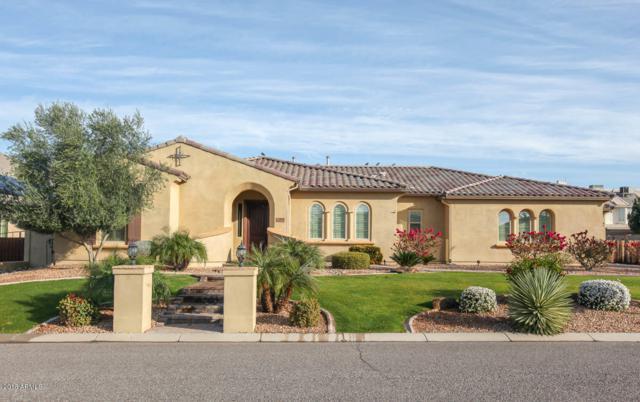 6838 E Ingram Circle, Mesa, AZ 85207 (MLS #5725254) :: The Kenny Klaus Team