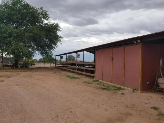 2984 E Gila Monster Drive, San Tan Valley, AZ 85140 (MLS #5725318) :: Keller Williams Legacy One Realty