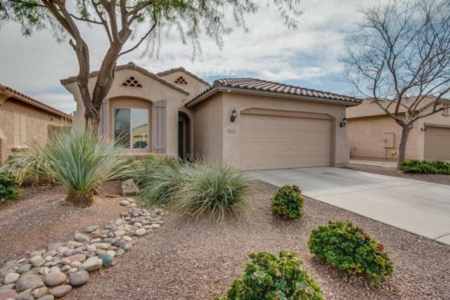 11063 E Serafina Avenue, Mesa, AZ 85212 (MLS #5725353) :: The Kenny Klaus Team