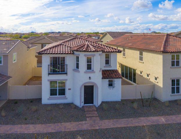 29227 N 122ND Lane, Peoria, AZ 85383 (MLS #5725370) :: Kepple Real Estate Group
