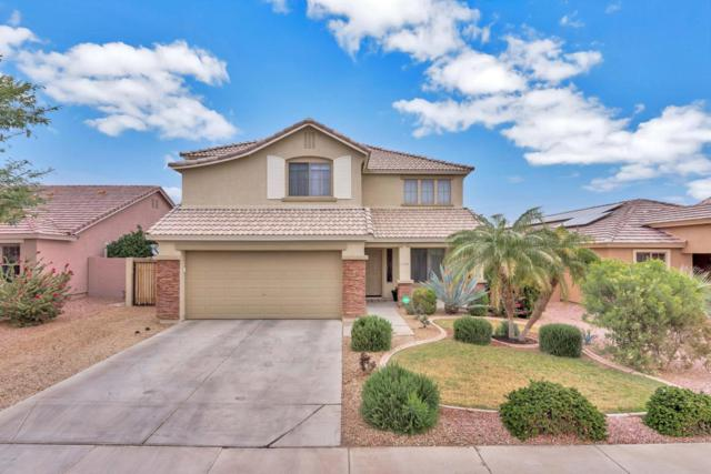 14864 W Dahlia Drive, Surprise, AZ 85379 (MLS #5725452) :: The Everest Team at My Home Group