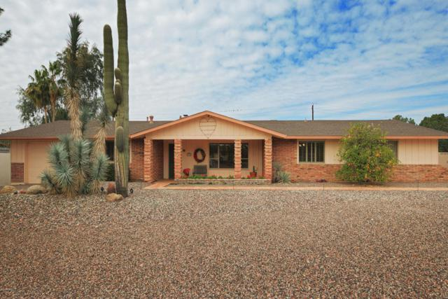 5738 N 24TH Street, Phoenix, AZ 85016 (MLS #5725464) :: Occasio Realty