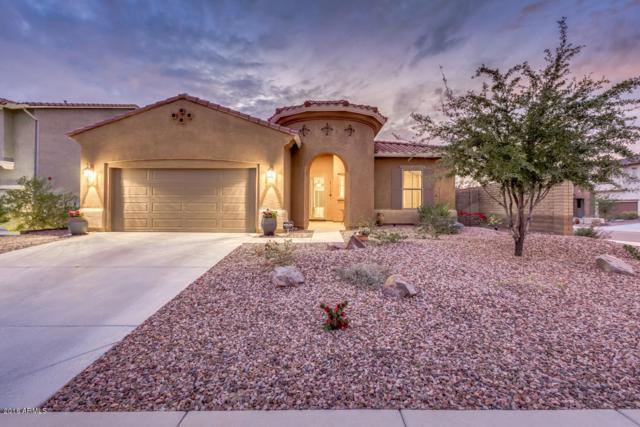 31342 N 137th Glen, Peoria, AZ 85383 (MLS #5725467) :: Kepple Real Estate Group