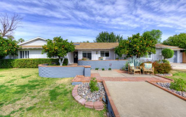 1012 W Las Palmaritas Drive, Phoenix, AZ 85021 (MLS #5725483) :: Yost Realty Group at RE/MAX Casa Grande