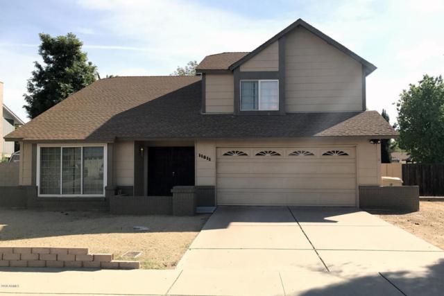 11811 N 65TH Avenue, Glendale, AZ 85304 (MLS #5725489) :: Yost Realty Group at RE/MAX Casa Grande