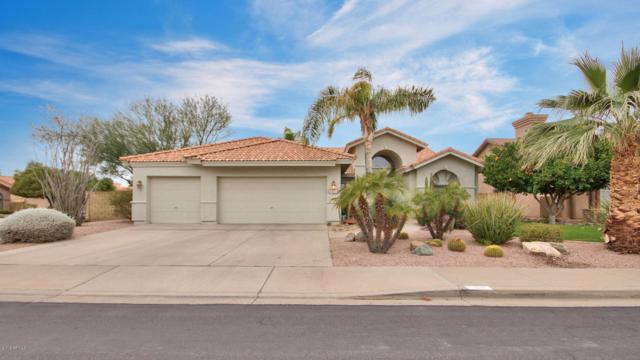 1818 N Sundial, Mesa, AZ 85205 (MLS #5725497) :: Revelation Real Estate