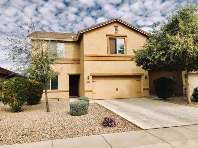 13066 E Marigold Lane, Florence, AZ 85132 (MLS #5725605) :: Yost Realty Group at RE/MAX Casa Grande