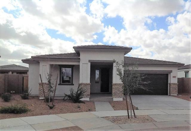 22543 E Camina Buena Vista, Queen Creek, AZ 85142 (MLS #5725608) :: Yost Realty Group at RE/MAX Casa Grande