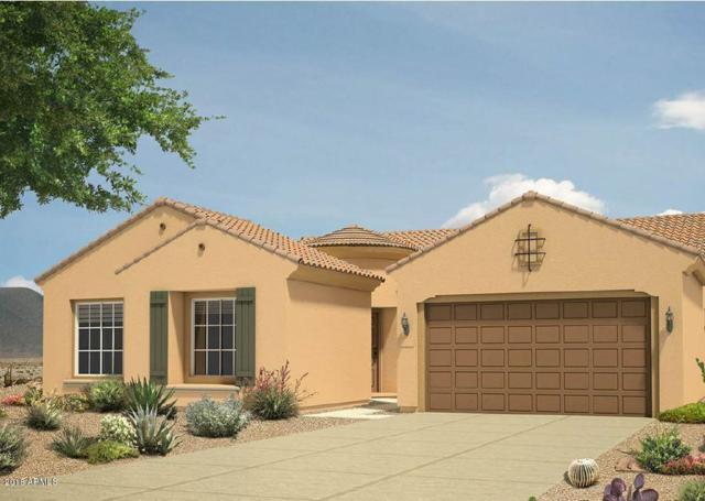 10925 E Tarragon Avenue, Mesa, AZ 85212 (MLS #5725611) :: Revelation Real Estate