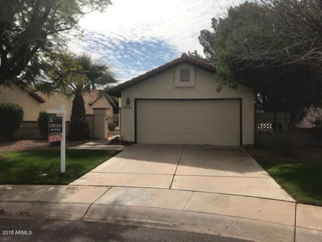 2231 W Ironwood Drive, Chandler, AZ 85224 (MLS #5725629) :: Revelation Real Estate