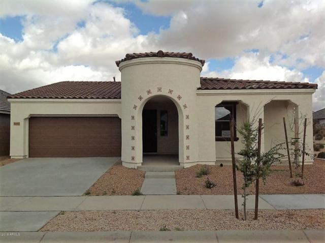 22492 E Calle De Flores, Queen Creek, AZ 85142 (MLS #5725651) :: Yost Realty Group at RE/MAX Casa Grande