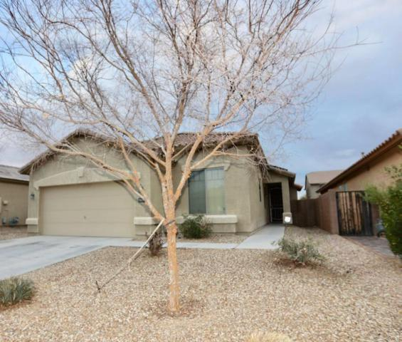 18208 W Eva Street, Waddell, AZ 85355 (MLS #5725663) :: Kelly Cook Real Estate Group