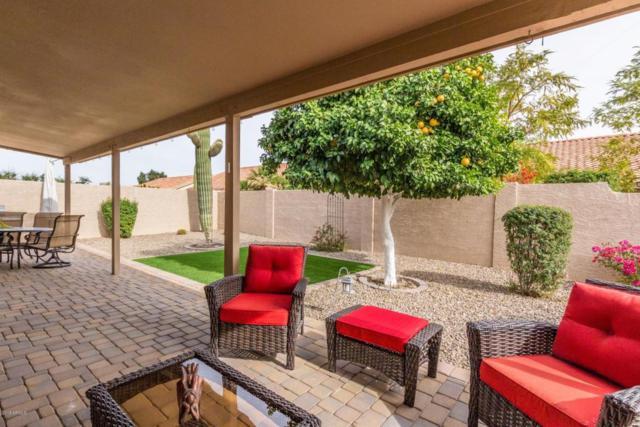 19803 N 95TH Avenue, Peoria, AZ 85382 (MLS #5725670) :: Kepple Real Estate Group