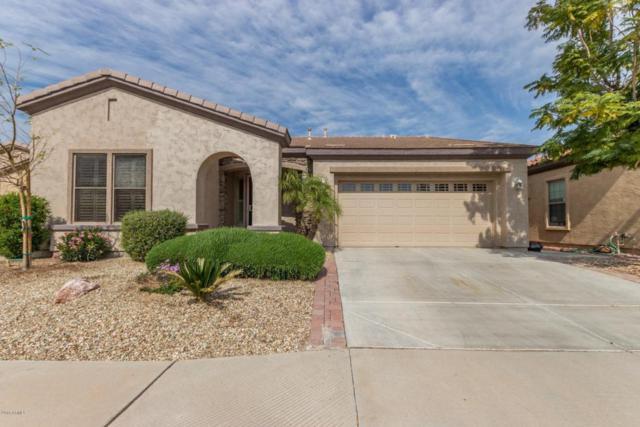 4056 E Donato Drive, Gilbert, AZ 85298 (MLS #5725710) :: Kepple Real Estate Group