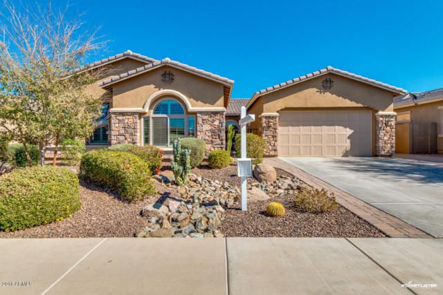 6713 S Lyon Drive, Gilbert, AZ 85298 (MLS #5725779) :: The Everest Team at My Home Group