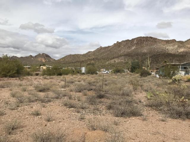 1785 W Tonto Street, Apache Junction, AZ 85120 (MLS #5725789) :: Yost Realty Group at RE/MAX Casa Grande