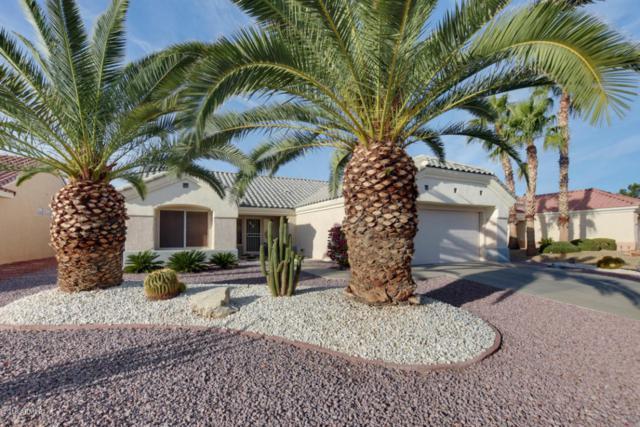 13019 W Caraway Drive, Sun City West, AZ 85375 (MLS #5725793) :: Keller Williams Legacy One Realty