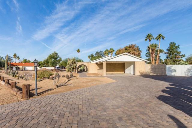 7226 W Angela Drive, Glendale, AZ 85308 (MLS #5725833) :: Occasio Realty