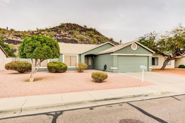 22637 N 30TH Avenue, Phoenix, AZ 85027 (MLS #5725835) :: Yost Realty Group at RE/MAX Casa Grande