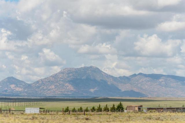 0 N Antelope Meadows Drive, Prescott Valley, AZ 86315 (MLS #5725850) :: Yost Realty Group at RE/MAX Casa Grande