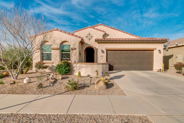 2616 E Questa Trail, Casa Grande, AZ 85194 (MLS #5725913) :: Yost Realty Group at RE/MAX Casa Grande