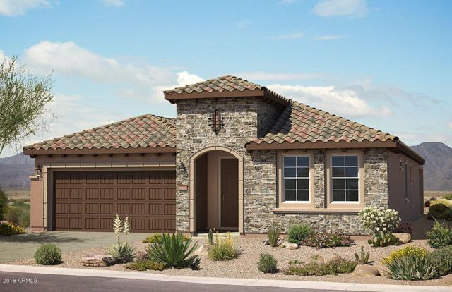20459 N 275TH Drive, Buckeye, AZ 85396 (MLS #5725931) :: Santizo Realty Group