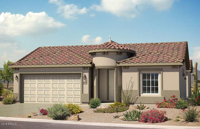 27408 W Mohawk Lane, Buckeye, AZ 85396 (MLS #5725946) :: Santizo Realty Group