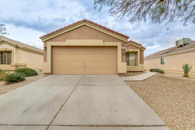 23982 N Nectar Avenue, Florence, AZ 85132 (MLS #5725992) :: Yost Realty Group at RE/MAX Casa Grande