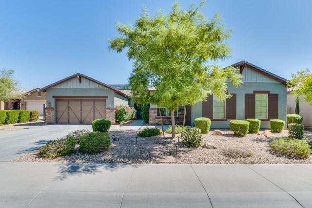 2463 N 160TH Avenue, Goodyear, AZ 85395 (MLS #5726001) :: Essential Properties, Inc.