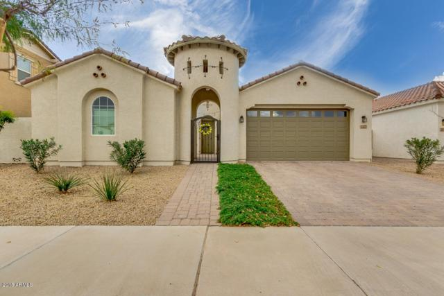 22333 E Cherrywood Drive, Queen Creek, AZ 85142 (MLS #5726020) :: Realty Executives