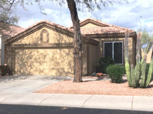 4410 E Creosote Drive, Cave Creek, AZ 85331 (MLS #5726032) :: Occasio Realty