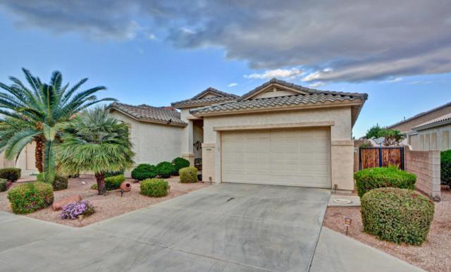 18298 N Arriba Drive, Surprise, AZ 85374 (MLS #5726074) :: The Laughton Team