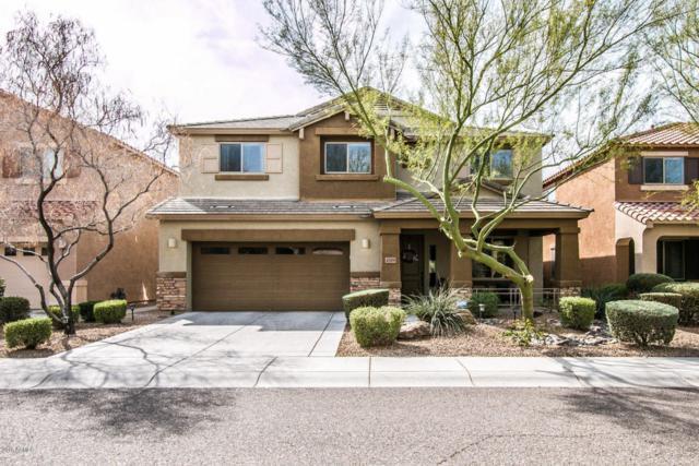 4309 E Folgers Road, Phoenix, AZ 85050 (MLS #5726091) :: Occasio Realty