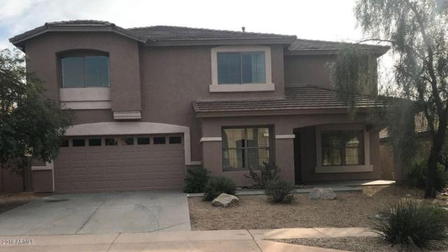 2401 W Florentine Road, Phoenix, AZ 85086 (MLS #5726150) :: Yost Realty Group at RE/MAX Casa Grande