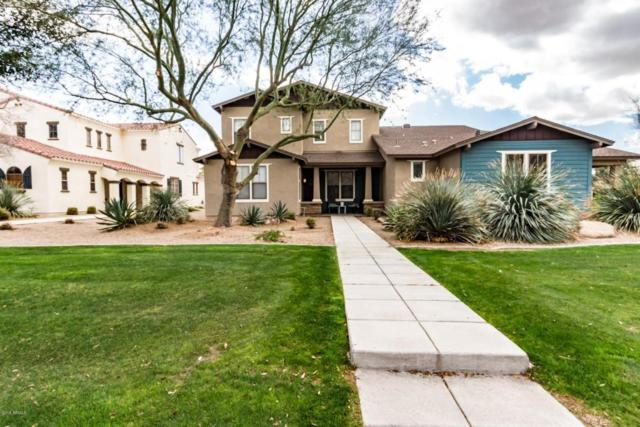 13445 N 151ST Drive, Surprise, AZ 85379 (MLS #5726154) :: Occasio Realty