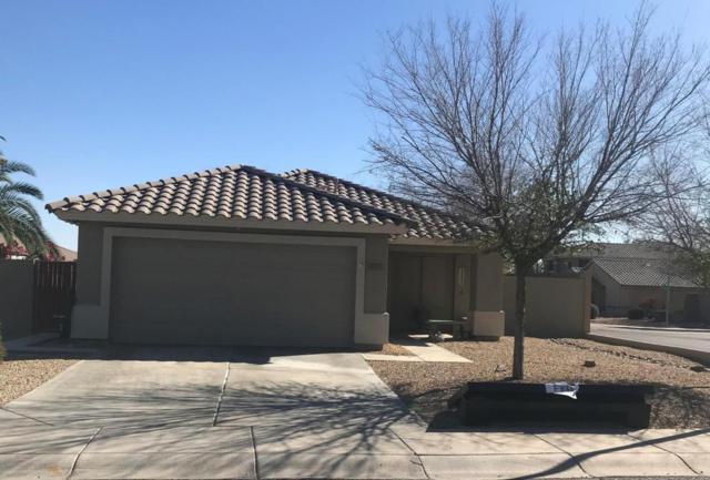 5207 W Campo Bello Drive, Glendale, AZ 85308 (MLS #5726171) :: Occasio Realty