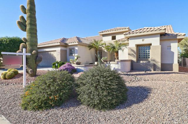 16244 W Starry Sky Drive, Surprise, AZ 85374 (MLS #5726182) :: Kortright Group - West USA Realty