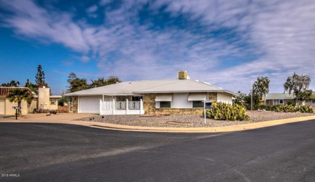 10810 W Manzanita Drive, Sun City, AZ 85373 (MLS #5726199) :: Occasio Realty